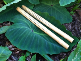 puili sticks on a leaf
